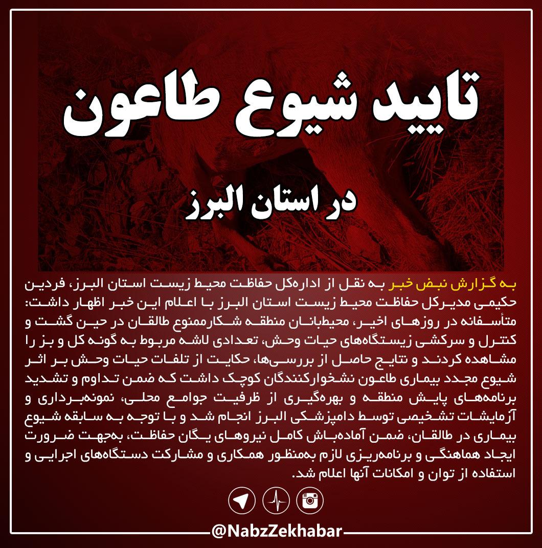 تایید شیوع طاعون در استان البرز